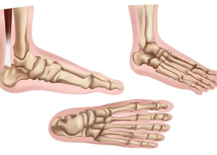 Foot Pain | Anatomy in Motion | Balwyn North