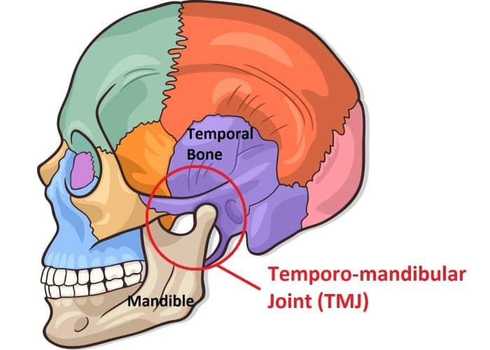 TMJ | Temporomandibular Joint | Osteopathy | Balwyn North