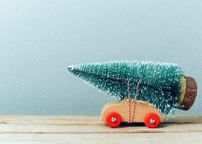 Christmas tree | Osteopath