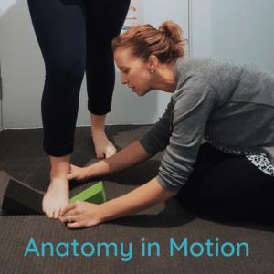 anatomy in motion | gary ward